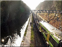 SP0484 : Birmingham & Worcester Canal and railway line by Phil Champion
