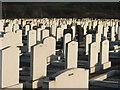 SE2430 : Cemetery on Whitehall Road. by Steve Partridge