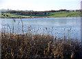 NY0782 : Kirk Loch, Lochmaben by Lynne Kirton