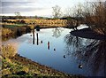 NY1082 : River Annan reflections by Lynne Kirton