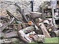 SE8690 : Firewood. by Steve Partridge