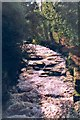 NZ0814 : River Greta, Rokeby by Gordon Hatton