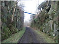 NU0800 : Cutting on Disused Railway Line by C Massey