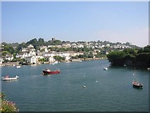 SX5547 : Northern side of Newton Creek from Noss Mayo by Roy Douglas
