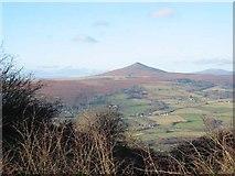 SO2718 : The Sugar Loaf, near Abergavenny by John Thorn