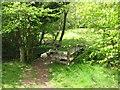 SO2419 : Bridge over the Grwyne Fawr by John Thorn