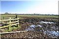 NY2050 : Farmland by Bob Jenkins