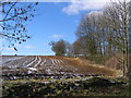 SE7466 : Firby Farmland by Stephen Horncastle