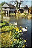 SU9948 : Boathouse on the Wey Navigation, Guildford. by Colin Smith