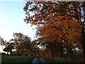 SP9614 : Beacon Road through Duncombe Terrace by Rob Farrow