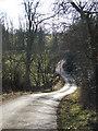 NY6417 : Brackenslack Lane by Tim Leete