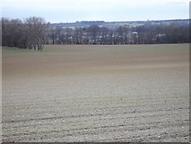 TQ8554 : South West from the Pilgrims' Way by Penny Mayes