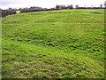 NZ3514 : West Hartburn : Medieval  (1066-1540)  Village by Hugh Mortimer