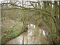 SO5472 : Ledwyche, Caynham by Richard Webb