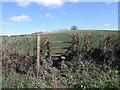 SJ5305 : Footpath to Berrington by Michael Patterson
