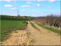 NZ3535 : Farm road to Low Raisby, near Trimdon by Oliver Dixon