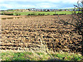 NZ3242 : Ploughed field, Cookshold Lane, Sherburn by Oliver Dixon