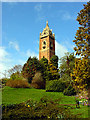 ST5772 : Cabot Tower, Brandon Hill by Linda Bailey