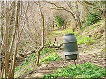 SE5584 : Pheasant Feeders, Callister Wood by Mick Garratt