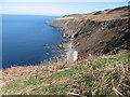 NT8470 : Coastline at Black Bull near Coldingham by Lisa Jarvis
