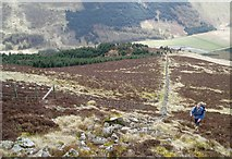 NT1613 : The south slope of Carrifran Gans by Eileen Henderson