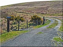 NX2261 : The road to Carscreugh Croft by Oliver Dixon