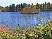 NX2764 : Crannog on Loch Heron by Oliver Dixon
