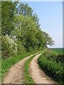 SE7578 : Track at SE750781 by Stephen Horncastle