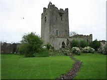 N0520 : Clonony Castle by Brian Shaw