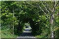 J5473 : Crossnamuckley Road, Newtownards by Albert Bridge