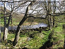NY2000 : The Infant River Esk by Andy Beecroft