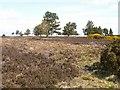 NH6236 : Druimashie Moor by Jim Bain
