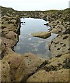 NT6185 : Rock Pool, St. Baldred's Boat, Seacliff by Lisa Jarvis