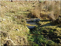 NH0362 : Tobar Mhor  (Mealruabha's Well) by Tom Forrest