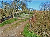 NX2262 : Road to Drumpail Farm by Oliver Dixon