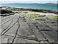 HY4849 : Flat rocks, Papa Westray by Rob Burke