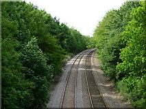 TM3964 : Railway north of Saxmundham by Stephen McKay