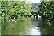 ST7165 : River Avon above Newbridge Railway Bridge by Pierre Terre
