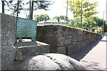 NJ0459 : The Witches Stone in Forres by Des Colhoun