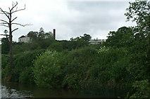 ST6469 : River Avon above Park Corner by Pierre Terre