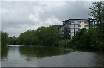 ST7364 : River Avon below Weston Bridge by Pierre Terre