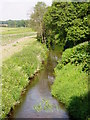 SJ7321 : River Meese by Eirian Evans