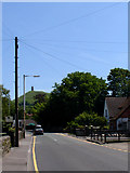 ST5038 : Looking East along Bere Lane by Linda Bailey