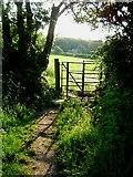 SP9310 : The Ridgeway near Wigginton by Cathy Cox