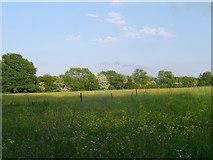SP9310 : Meadow near Wigginton by Cathy Cox