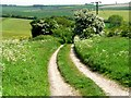 SE9237 : Wolds Way by Roger Gilbertson