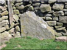 SD7880 : Boundary Stone by John Illingworth