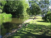 TL0506 : River Gade in Hemel Hempstead by Nigel Cox