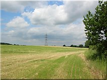 SE6959 : Between Sand Hutton & Claxton by DS Pugh