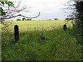 NZ3617 : Gate Posts : Salter Carr Farm by Hugh Mortimer